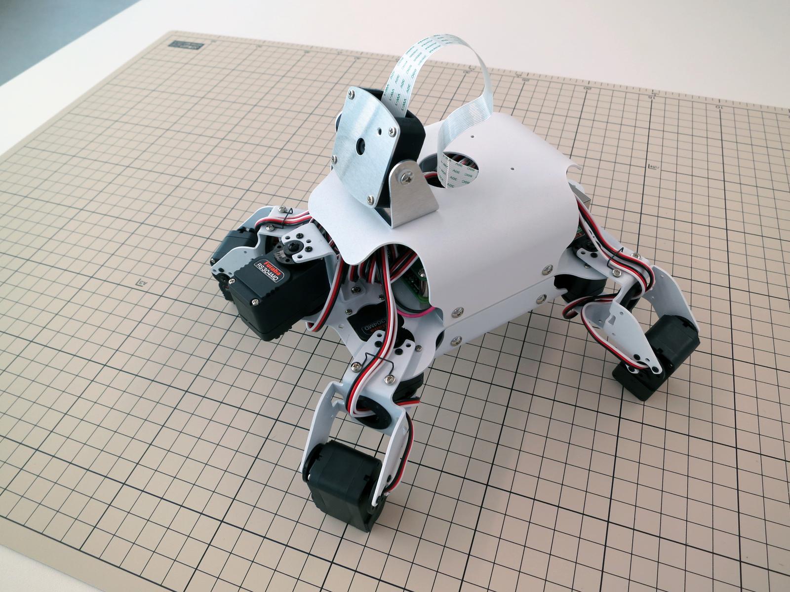 EXOS Turtle Robot